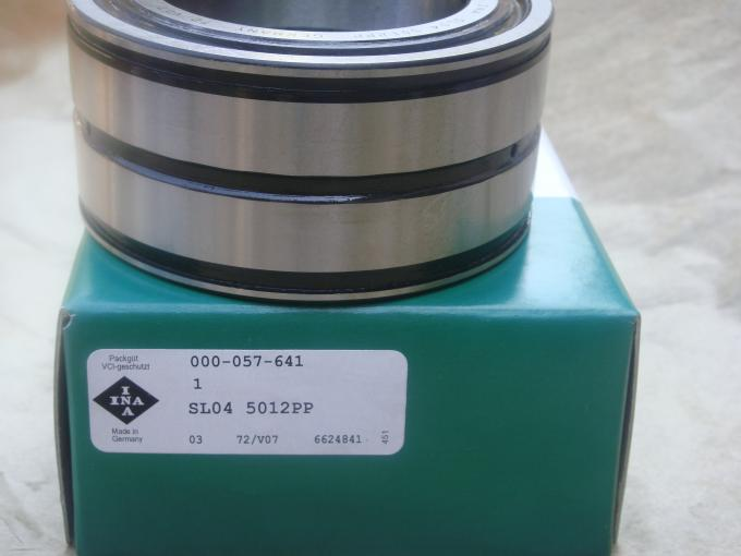 Original INA Cylinder Roller Bearing Heavy Load High Limit Speed