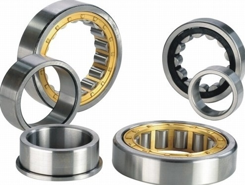 Durable Cylindrical Roller Thrust Bearings Chrome Steel With Brass Cage NJ305ECP